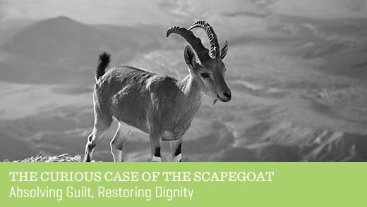 The Curious Case of the Scapegoat