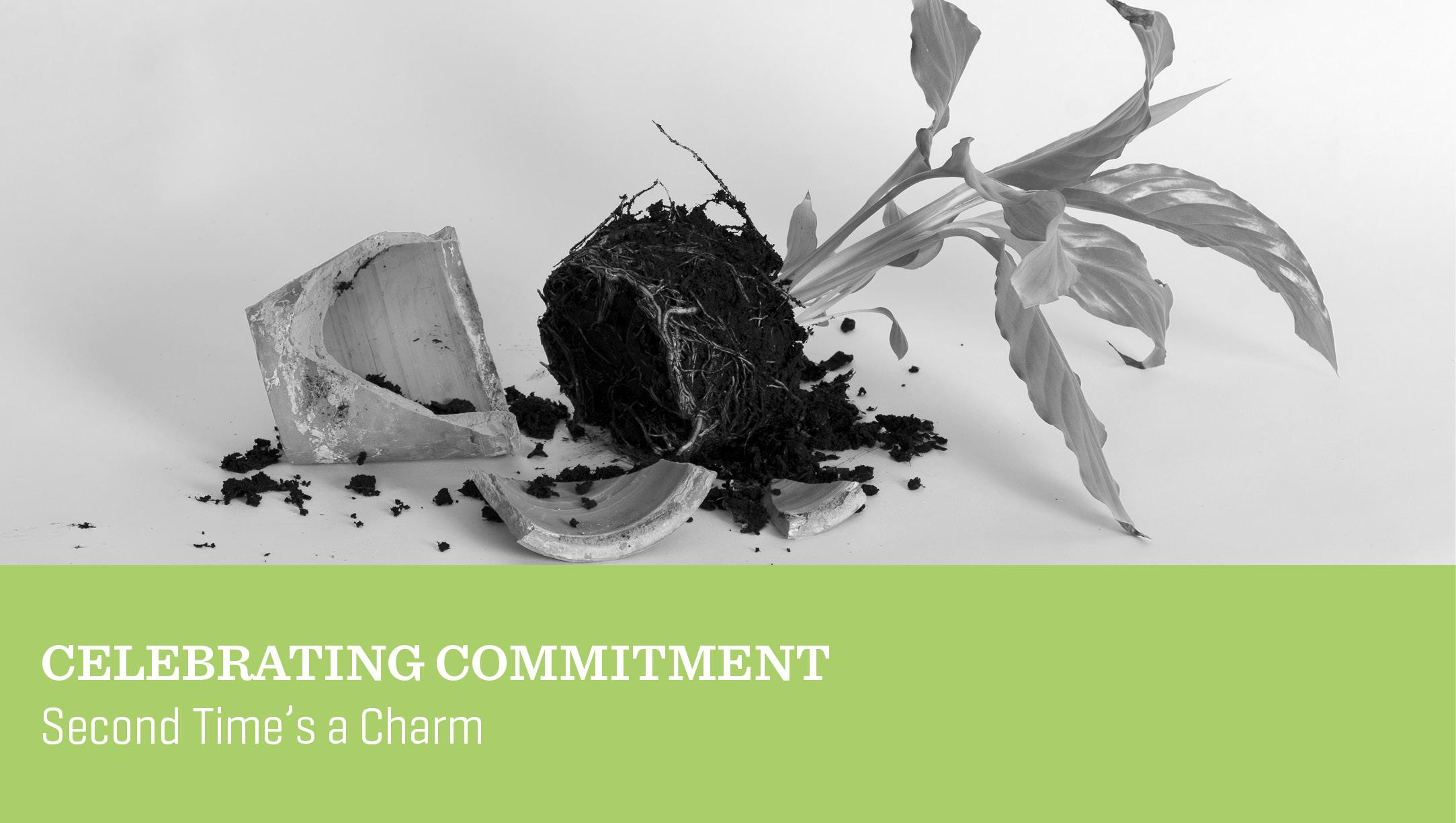 Celebrating Commitment