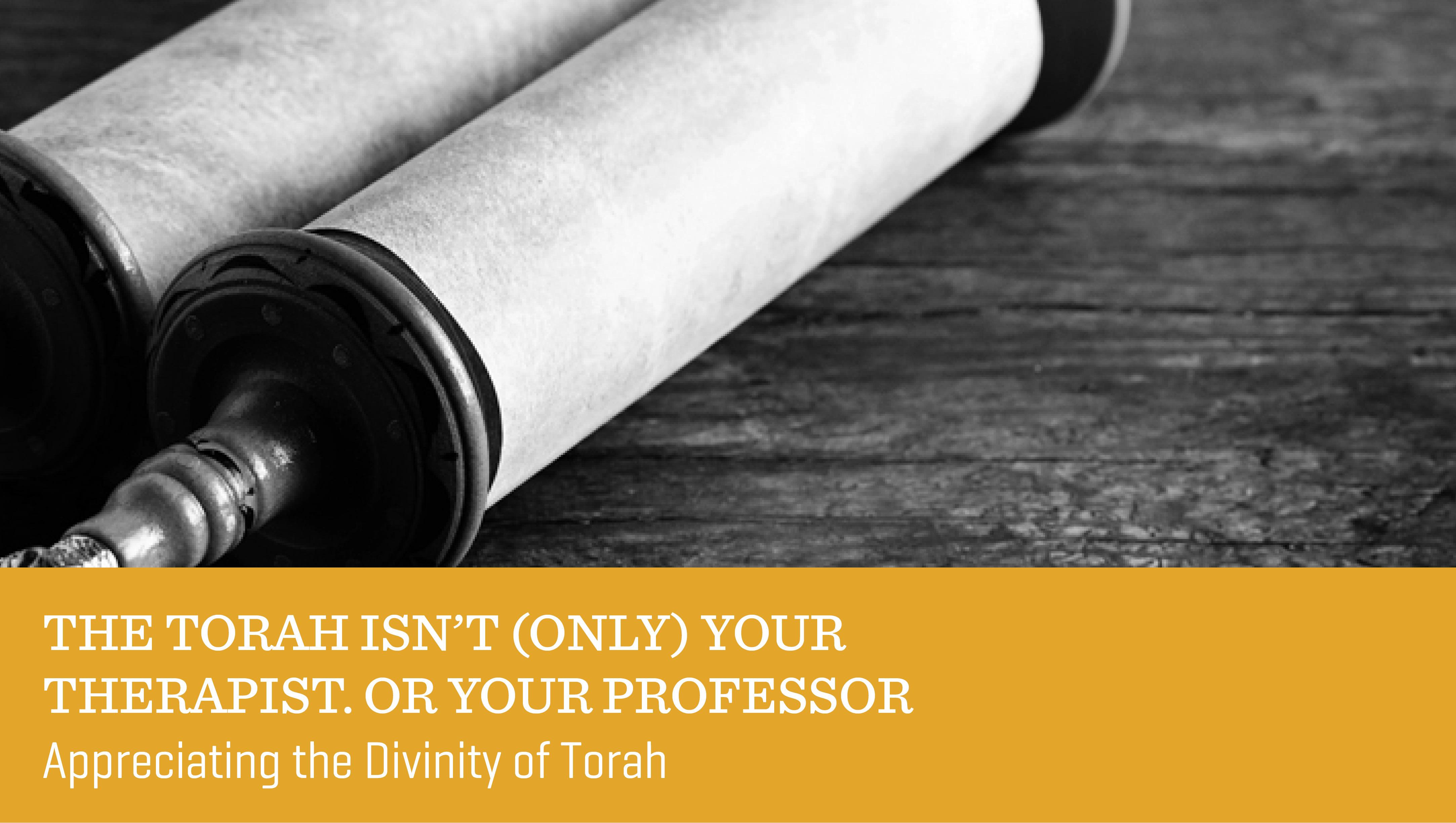 The Torah Isn't (Only) Your Therapist. Or Your Professor